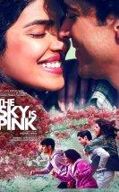 The Sky Is Pink izle