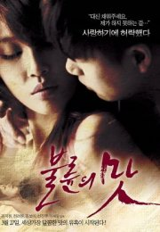 The Taste of an Affair Erotik Film izle