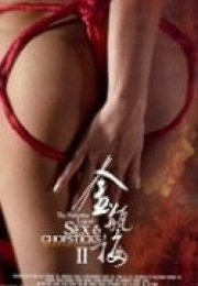 Sex And Chopstick 2 Erotik Film İzle