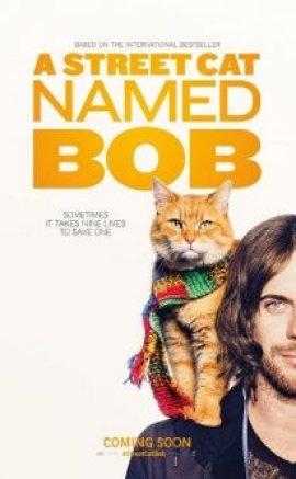 A Street Cat Named Bob 2016 izle