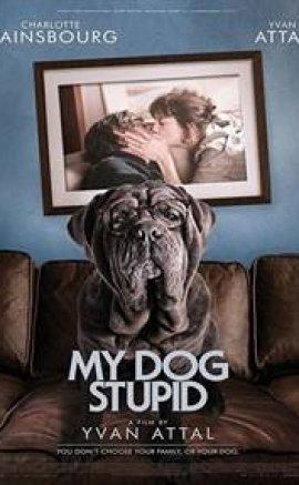 Benim Şapşik Köpeğim izle