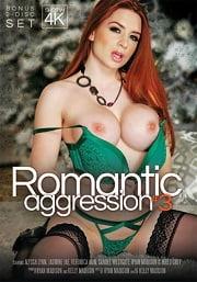 Romantic Aggression 3 (2016) Erotik Sinema izle