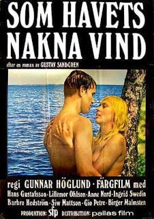 One Swedish Summer Erotik Film izle