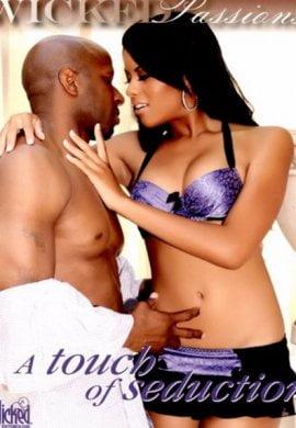 A Touch of Seduction Erotik Film izle