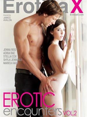 Erotic Encounters Vol 2 Erotik Film izle