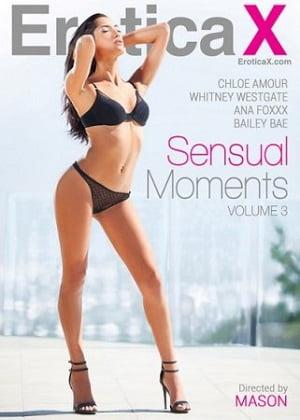 Sensual Moments 3 Erotik Film izle